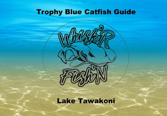 Lake tawakoni catfish report september 16 2017 whisker for Lake tawakoni fishing guides